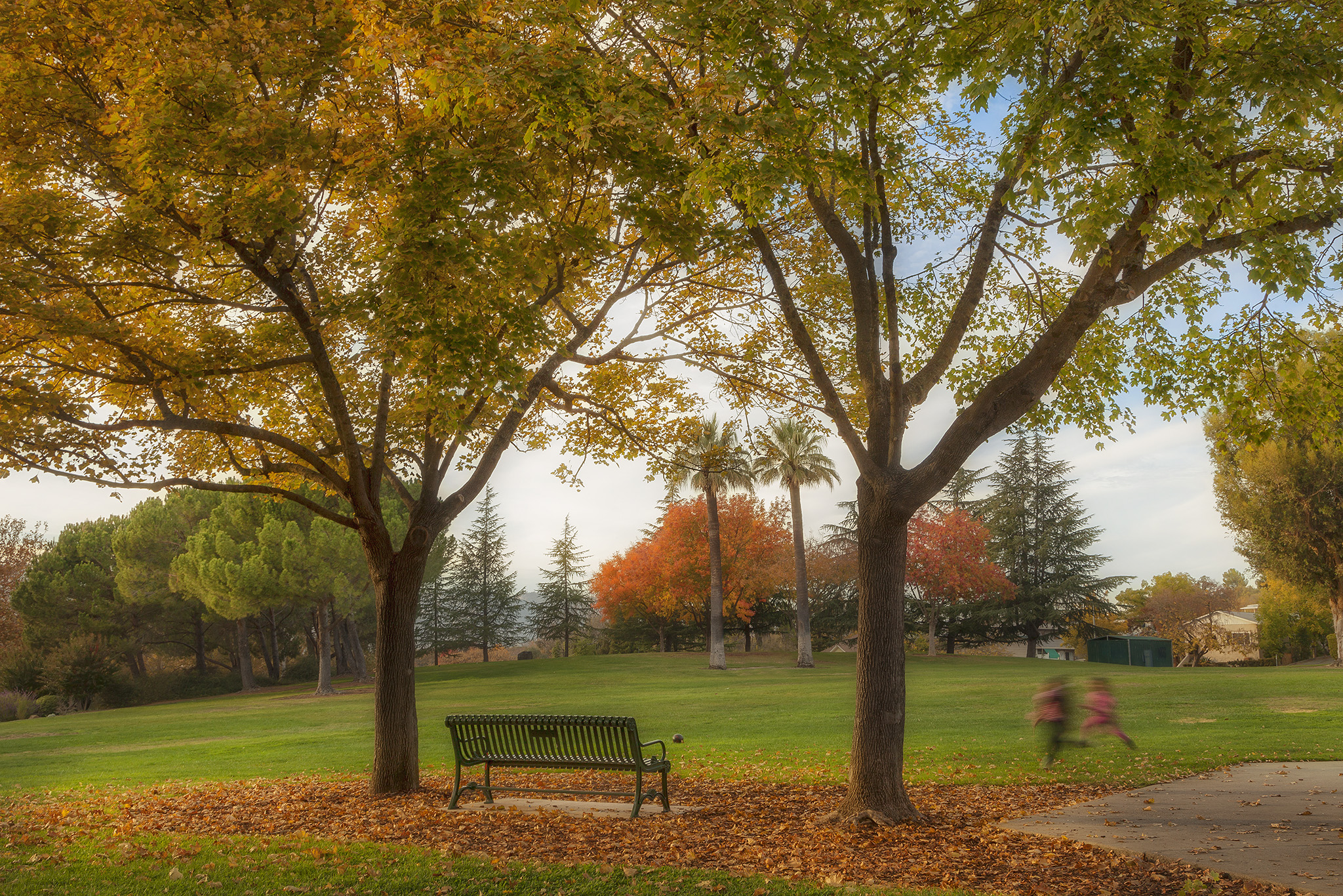 Downtown Vacaville - Andrews Park