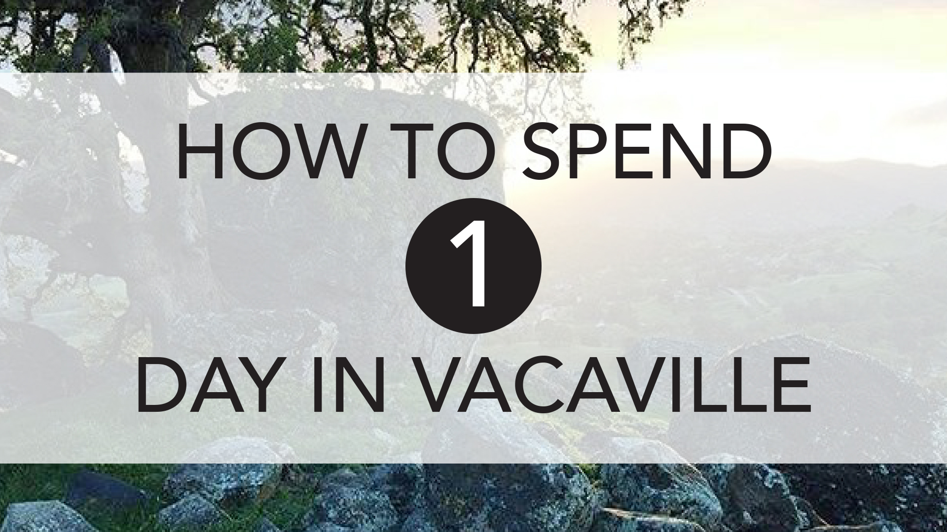 how to spend 1 day in vacaville