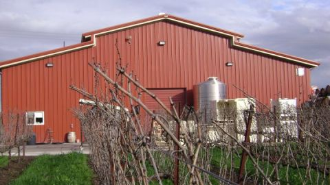 Tenbrink Vineyards